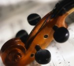Violin Pegbox and Scroll